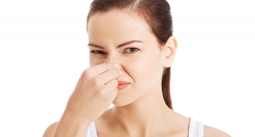 Por qu huele mal mi lavavajillas todorepuestoselectro for Mi habitacion huele a humedad